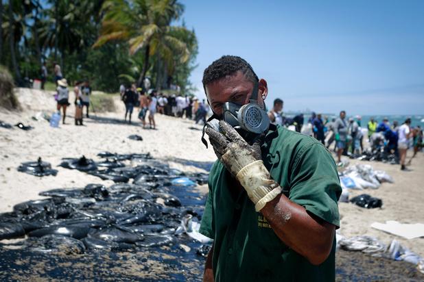 """Marée noire au Brésil: """"le pire est à venir"""""""