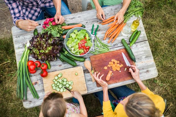 Bedrijfsnetwerk Next Food Chain moet plantaardige voeding vanzelfsprekender maken