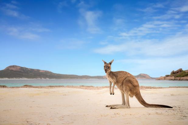 Etre vacciné contre le covid pourrait être bientôt une condition pour entrer en Australie