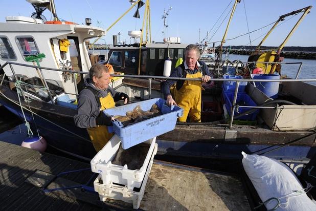 La pêche maritime en Belgique à son plus bas niveau en plus de quinze ans