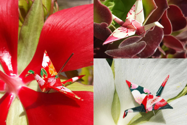 Accrocher un origami le 16 mars en hommage collectif au deuil