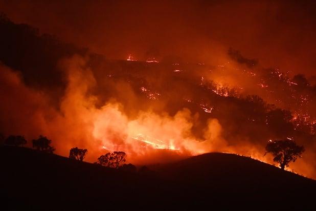 Australie: des feux de forêt se rejoignent en un incendie géant