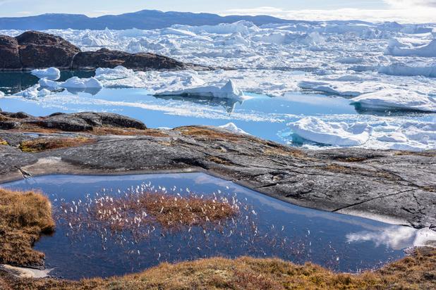 Trump voudrait acheter le Groenland, l'île rétorque qu'elle n'est pas à vendre