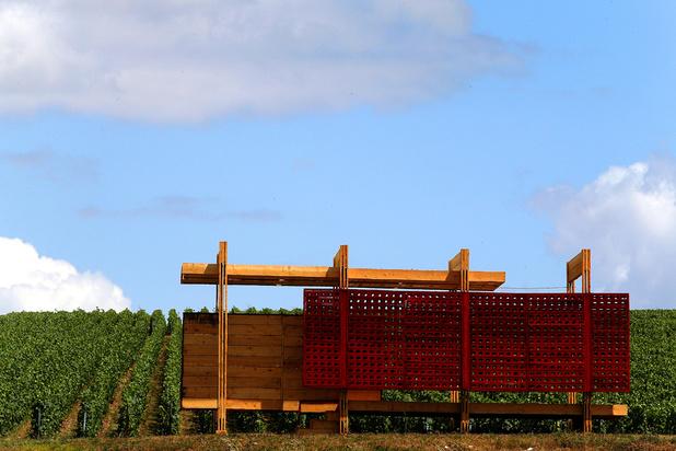 Les loges de vigne, modestes cabanes de vignerons, font leur retour en Champagne