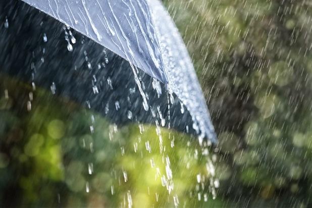 Malgré les récentes pluies, le sud de la Wallonie reste en déficit de précipitations