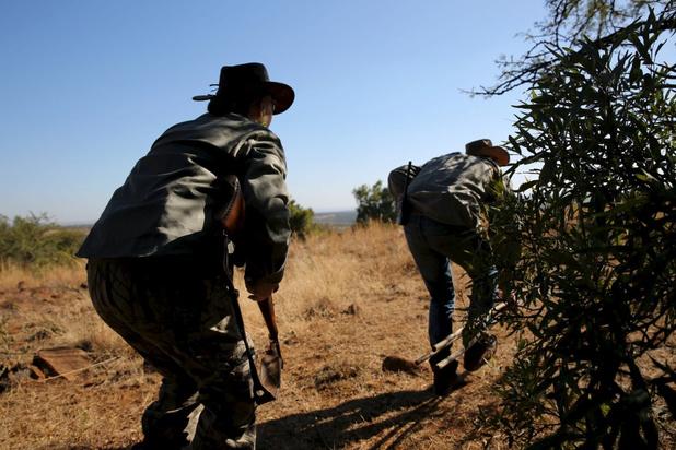 Animal Rights eist verbod op het organiseren van jachtsafari's