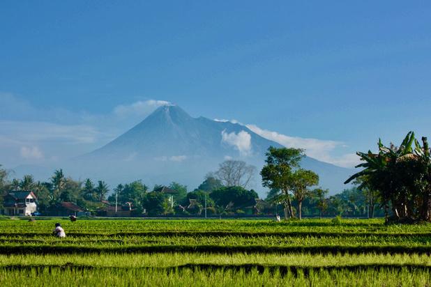 Java: des dizaines de millions d'habitants privés d'électricité
