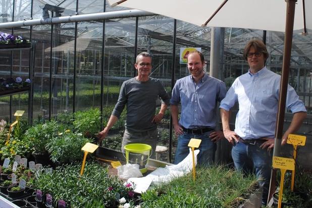 Zevende editie West-Vlaamse plantendag in Assebroek