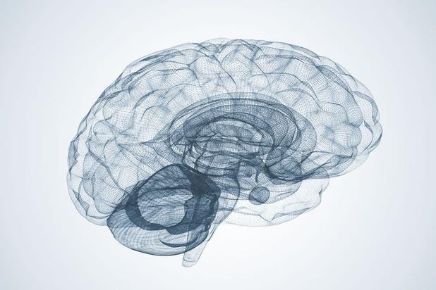 """'Idee van """"links"""" en """"rechts"""" denken, berust op een te eenvoudige voorstelling van de werking van de hersenen'"""