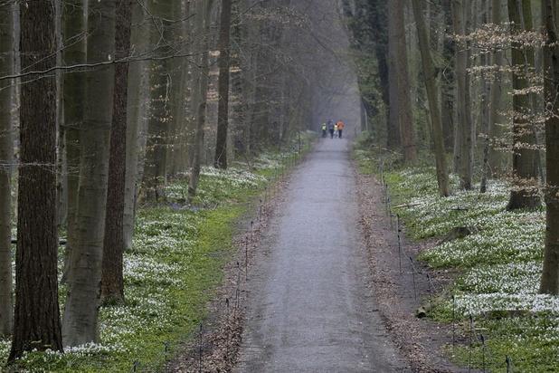 Vlaanderen zwaar gezakt voor Europese natuurdoelen