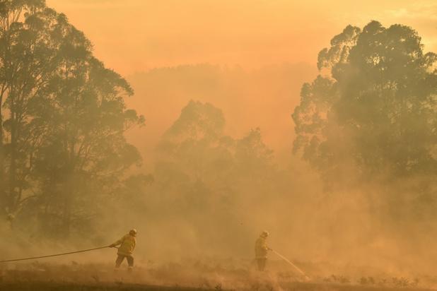Al 1,1 miljoen hectaren verwoest bij bosbranden in Australië