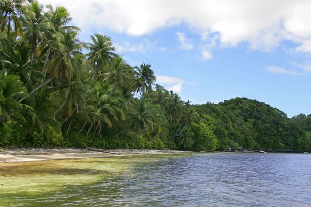 Palau interdit les crèmes solaires toxiques pour protéger ses coraux
