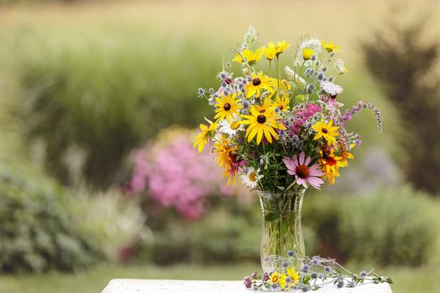 """Fleurs coupées: l'ascension du """"slow-flower"""""""