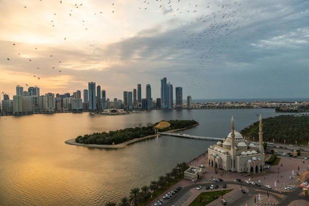 Début des festivités à Charjah, Capitale mondiale du livre 2019
