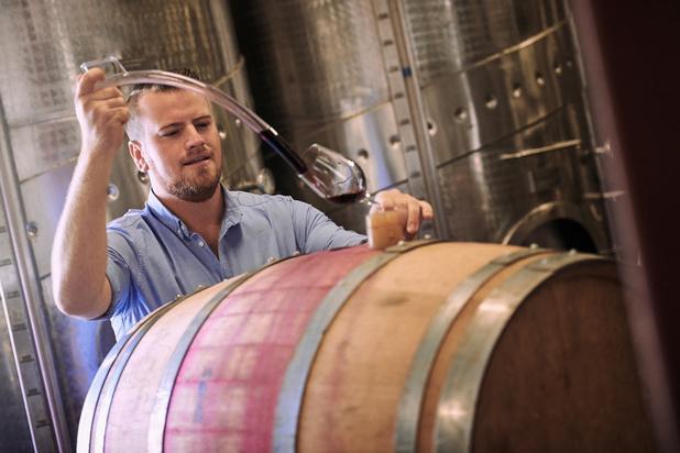 La production de vin attendue à la baisse cette année en France