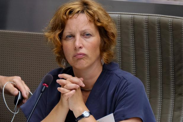 Groen: 'Vlaanderen kapt illegaal bomen langs waterwegen'
