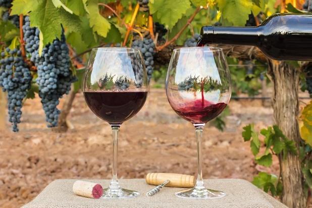 La filière viticole doit s'adapter aux nouveaux modes de consommation