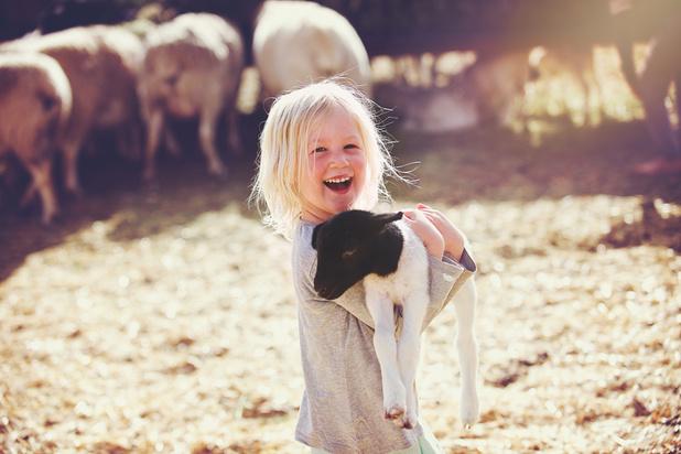 Les Journées fermes ouvertes, des rendez-vous familiaux pour renouer avec le monde agricole