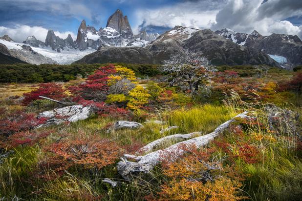 Vijftien leuke feitjes over Patagonië die je misschien nog niet kende