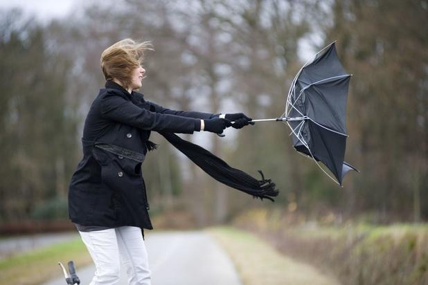 Les parapluies s'envoleront jeudi