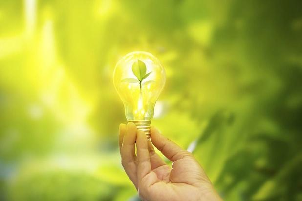 Voiture électrique: la Belgique dispose-t-elle de suffisamment d'électricité verte ?