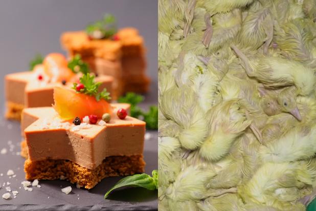 Le foie gras, produit adoré et conspué