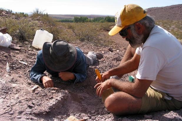 Dans un sanctuaire de dinosaures du sud-ouest de la France, on est encore tombé sur un os