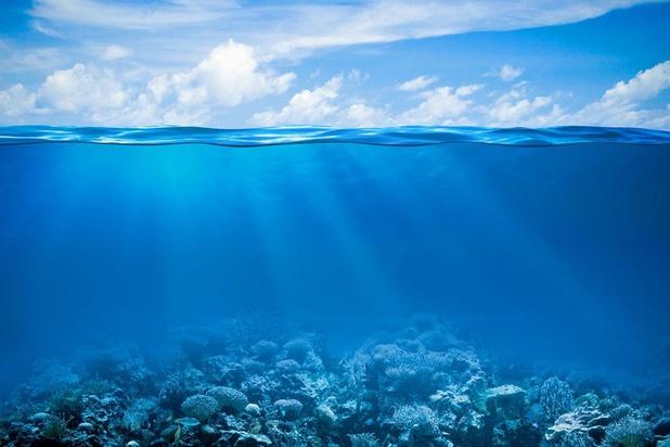 """Chaleur record dans les océans: """"Il n'est plus temps de tergiverser"""""""