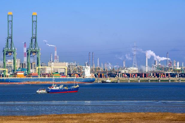 Exportbarometer: waar liggen Belgische bedrijfsleiders van wakker?