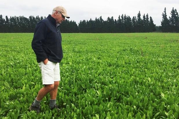 Amerikaanse landbouwers roepen Trump op zo snel mogelijk vrede te sluiten met Peking