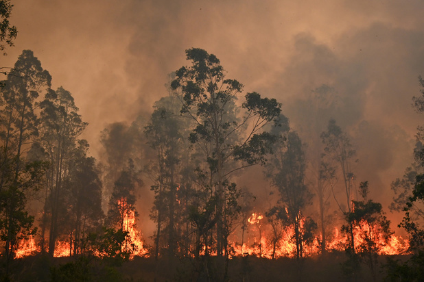 Incendies en Australie: les pompiers redoutent une aggravation de la situation