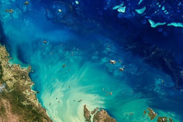 Australische regering keurt controversieel mijnproject bij Great Barrier Reef goed