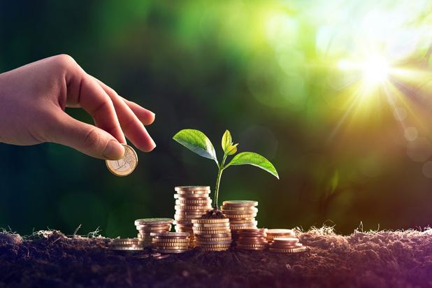 Près de 100 milliards d'euros de fonds de placement belges tournés vers la durabilité