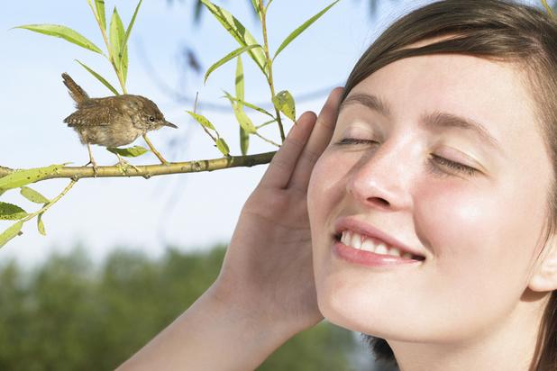 Chants d'oiseaux, eau qui coule: les bienfaits des bruits de la nature sur la santé
