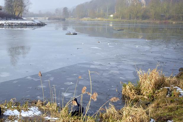 Ville et université mènent une action pour mieux protéger le lac de Louvain-la-Neuve