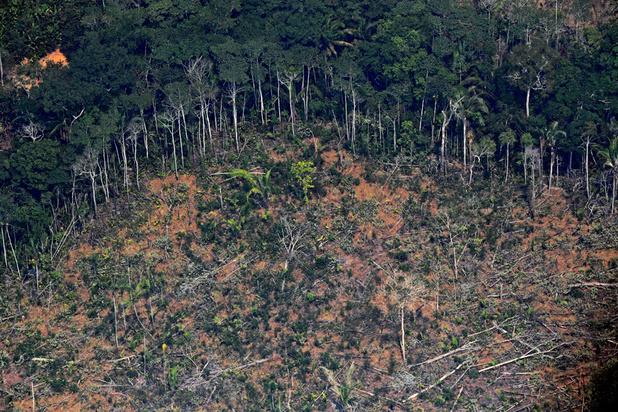 Brésil: 94% de la déforestation en Amazonie est illégale
