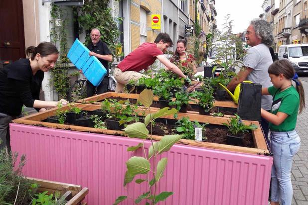 Antwerpse straat vormt parkeerplaatsen om tot groene terrassen