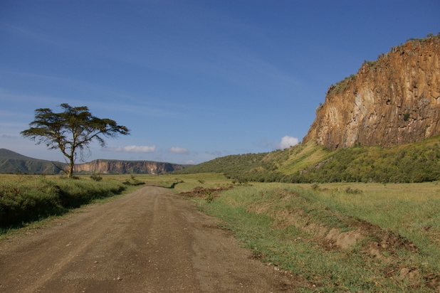 Zes toeristen komen om in Keniaans natuurpark