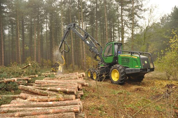 'Er is nood aan bijkomend bos, maar toch kan bomen kappen in het bos niet altijd kwaad'