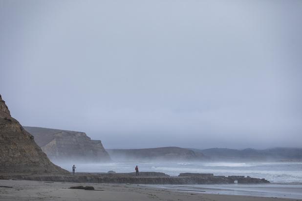 """Une plage californienne recouverte de milliers de """"poissons pénis"""""""