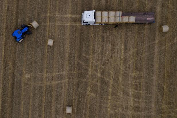 Boeren zijn boos op de samenleving: 'Wij zijn geen dierenmishandelaars en milieuvervuilers'