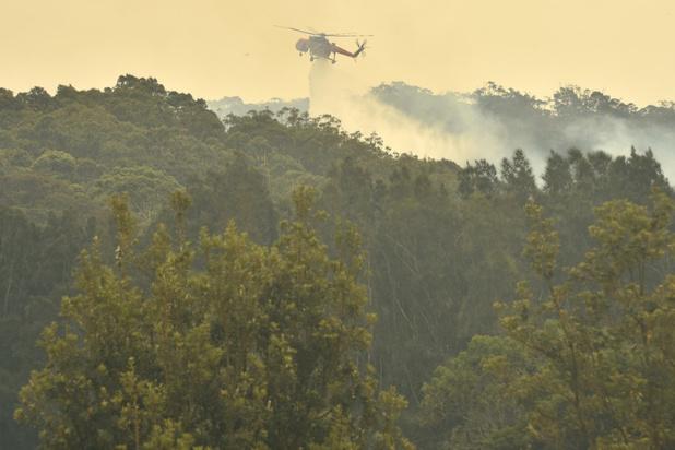 Bosbranden Australië: één dode en zes vermisten na 'vreselijke dag'