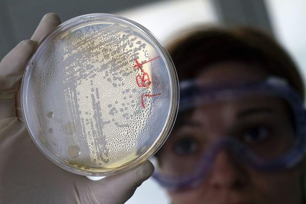 La résistance aux antibiotiques, l'autre fléau qui menace gravement la population mondiale