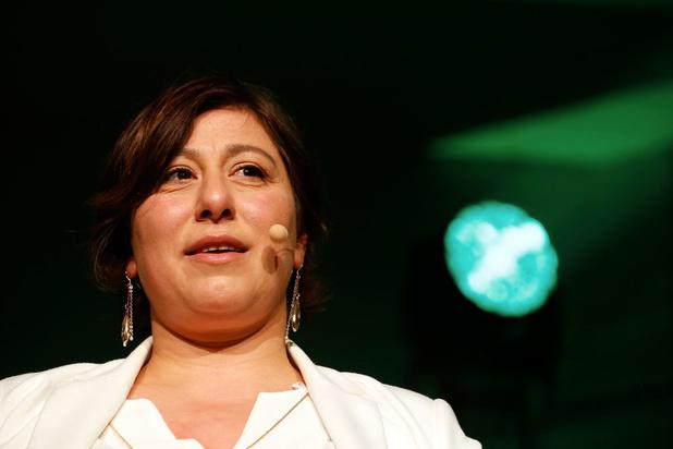 Federale formatie: Groen en Ecolo zien nog geen basis voor regering met ecologisten