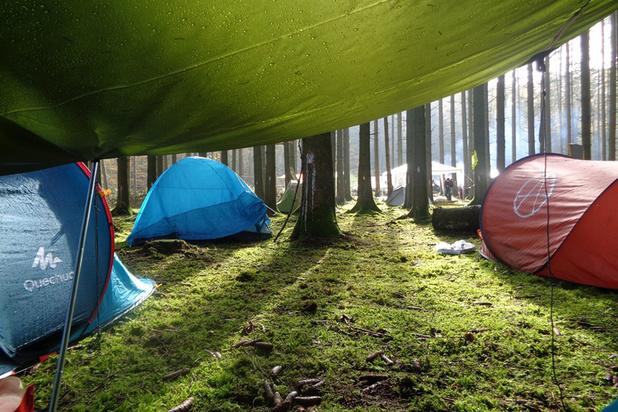 Arlon : des activistes occupent une forêt pour éviter sa destruction