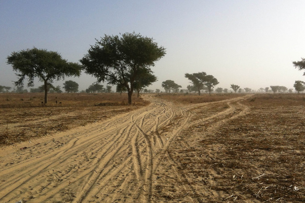La plus grande réserve naturelle d'Afrique menacée par l'exploitation pétrolière