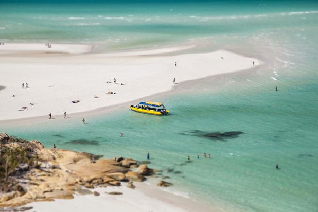 Une attaque de requin sème l'inquiétude chez les professionnels australiens