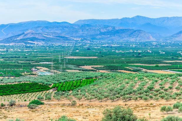 Le Péloponnèse: entre mythes et vins