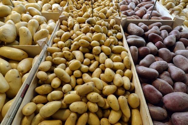 Purée, mais où se perd le prix de la patate ?
