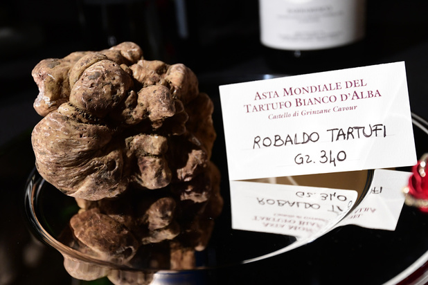 Une truffe blanche d'un peu plus d'un kilo adjugée 120.000 euros